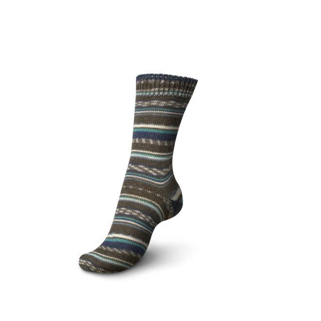 Schachenmayr Regia Timeless Color 4-Fach Sockenwolle 1172